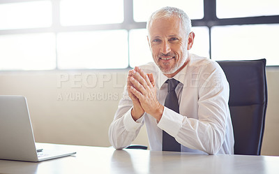 Buy stock photo Portrait of a mature businessman working at his desk in an office
