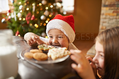 Buy stock photo Shot of a brother and sister sneaking freshly baked Christmas cookies on a table