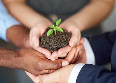 Buy stock photo High angle shot of a young plant being held by three businesspeople