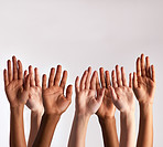 Raise your hands if you support diversity