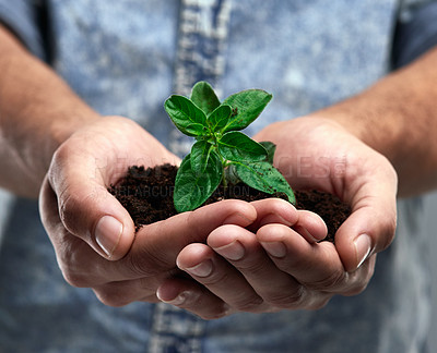 Buy stock photo Cropped shot of a man holding a plant growing out of soil