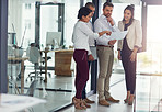 Finding business solutions as a team