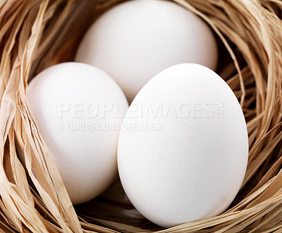 Buy stock photo Closeup image of the three eggs in the nest of dry straw