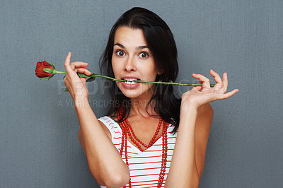 Buy stock photo Woman posing with rose between teeth against gray background
