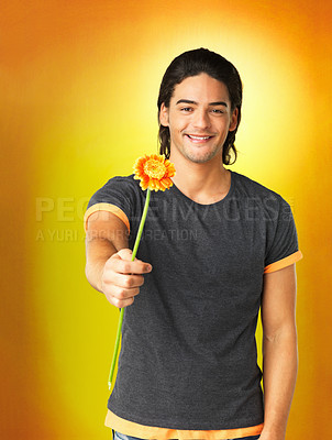 Buy stock photo Happy man holding out daisy against yellow background