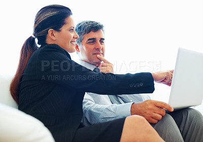 Buy stock photo Mature female executive pointing at laptop screen to colleague