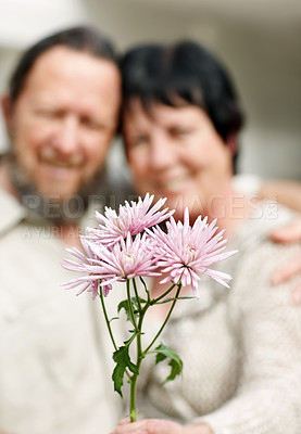 Buy stock photo Portrait of pink flowers in front with a old couple in background
