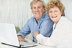 Happy old couple working together on laptop