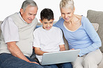 Happy old couple with grandson using a laptop on couch