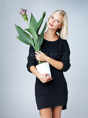 Buy stock photo Thoughtful young woman holding a plant isolated on grey