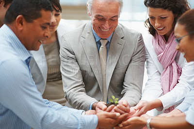 Buy stock photo Business unity - Multi ethnic colleagues holding a new plant together