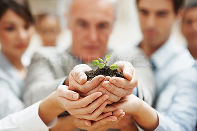 Buy stock photo Team growth - Business colleagues holding a young plant together