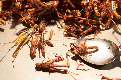 Buy stock photo Fried grasshoppers at a local streetmarket in Thailand