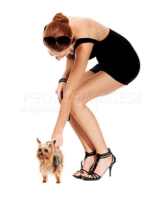 Buy stock photo An attractive young woman bending down towards her Yorkshire terrier