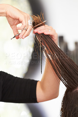 Buy stock photo Cropped image of a woman's hair being cut at the hairdresser