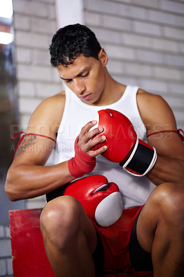 Buy stock photo A young fighter putting on his boxing gloves before a fight