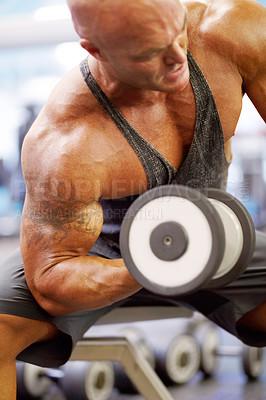 Buy stock photo Shot of a male bodybuilder doing hammer curls with dumbbells at the gym