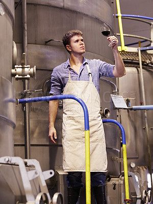 Buy stock photo A young wine maker testing a batch of his latest vintage