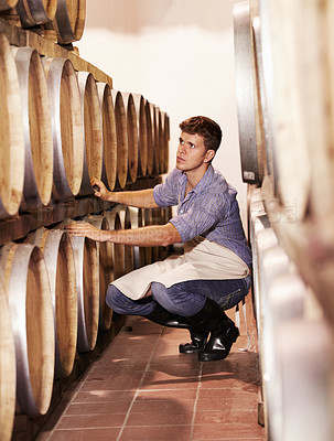 Buy stock photo A young wine maker counting his wine barrels in the cellar