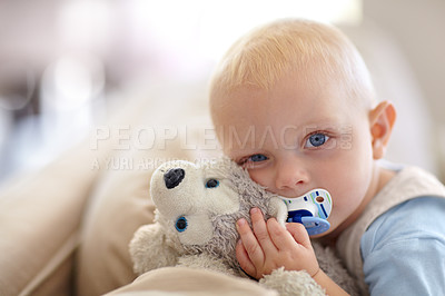 Buy stock photo Portrait of a cute baby boy holding a stuffed animal while looking at the camera