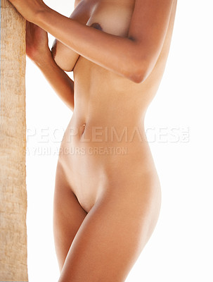 Buy stock photo Cropped image of a sexy female's nude body holding a palmtree on a white background