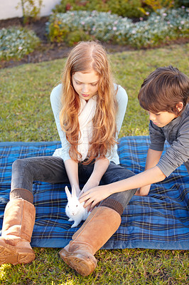 Buy stock photo A brother and sister sitting on a blanket outside while petting a fluffy rabbit