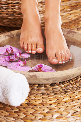 Buy stock photo Closeup of feet getting a spa treatment