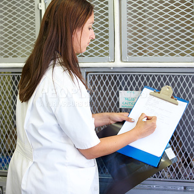 Buy stock photo A young woman vet kneeling in front of the cages and writing stuff down on her clipboard
