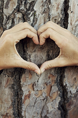 Buy stock photo Closeup shot of hands forming a heart-shape against a tree