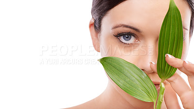 Buy stock photo A cropped image of a woman holding green leaves up to her face and looking at the camera