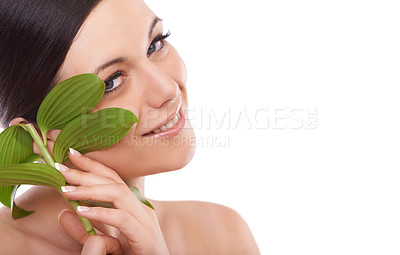 Buy stock photo A lovely young woman smiling at the camera while stroking her cheek with a green leaf