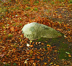 A huge stone in autumn forest