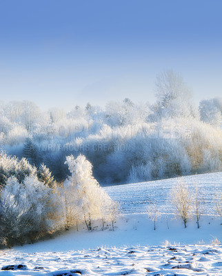 Buy stock photo Shot of a scenic winter landscape