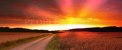 Buy stock photo A landscape photo of Famland - harvest and sunset