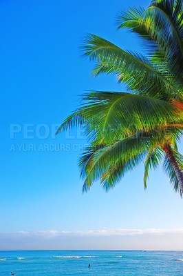 Buy stock photo Shot of a coastline