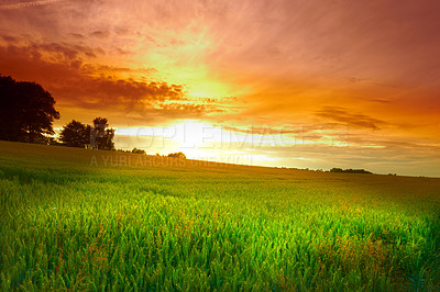 Buy stock photo A  photo of sunset in the countryside at summertime
