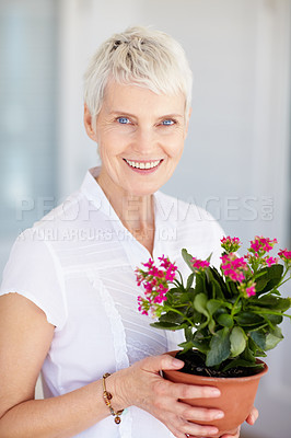 Buy stock photo Aged woman with a pot of flowers
