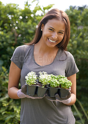 Buy stock photo Cropped shot of a young woman holding a six pack of seedlings