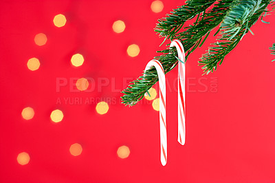 Buy stock photo Christmas candy hanging from a tree branch, isolated on red with scattered light effect - copyspace