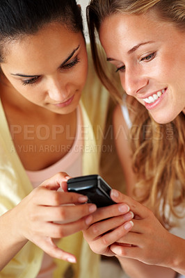 Buy stock photo Portrait of lovely young women using mobile phone together