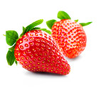 Isolated fruits - Strawberries