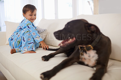 Buy stock photo A cute liittle boy sitting on a couch with his dog