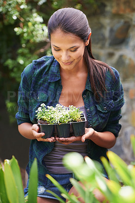 Buy stock photo Shot of an attractive young woman holding a punnet of seedlings