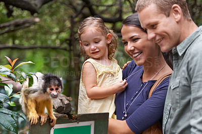 Buy stock photo Cropped shot of a happy young family spending the day at a monkey sanctuary