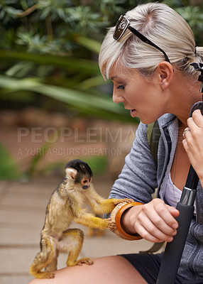 Buy stock photo Cropped shot of a young woman interacting with a little monkey at a wildlife park