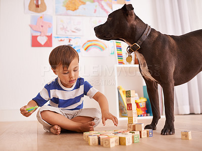 Buy stock photo A young boy playing with building blocks in his room while his dog stands by