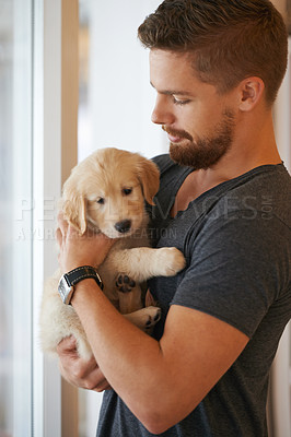 Buy stock photo Cropped shot of a young man holding a puppy