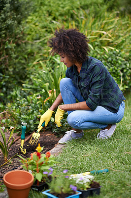 Buy stock photo Shot of an attractive young woman planting flowers in the garden