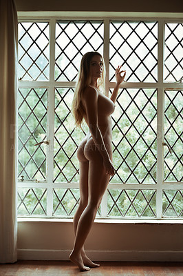 Nude in front of window pic 41
