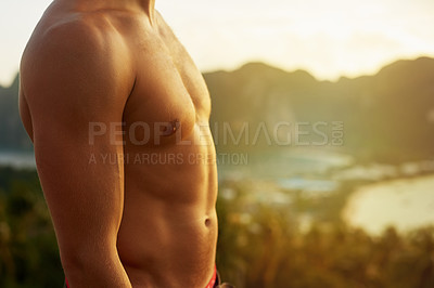 Buy stock photo Cropped shot of an unidentifiable man's torso against a tropical view